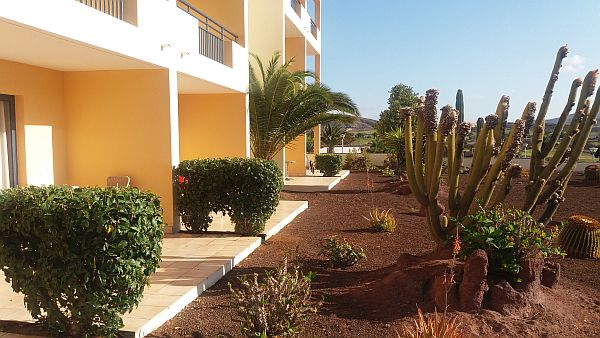 fuerteventura resort