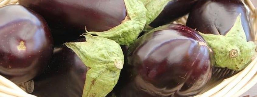 aubergine recept