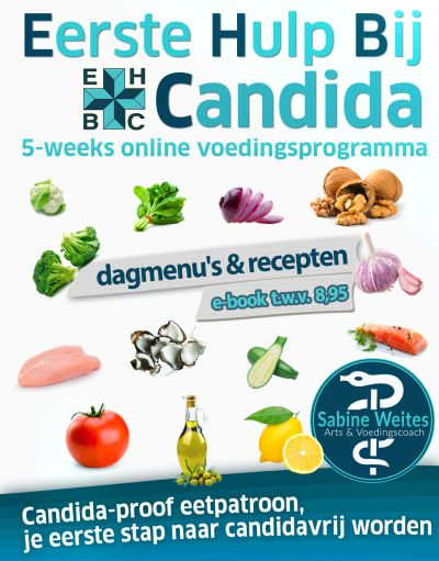 Eerste hulp bij Candida EBOOK Cover Dagmenus V2 400x511 1